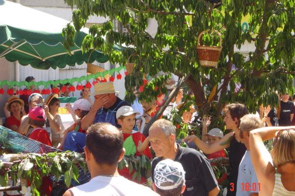 Le défilé de 2005